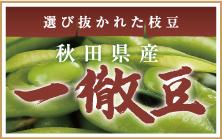 選び抜かれた枝豆 秋田県産 一徹豆